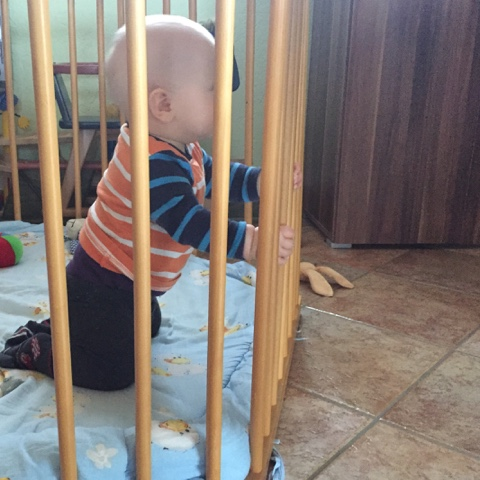 Der Knuffelhase kniet… ähm steht
