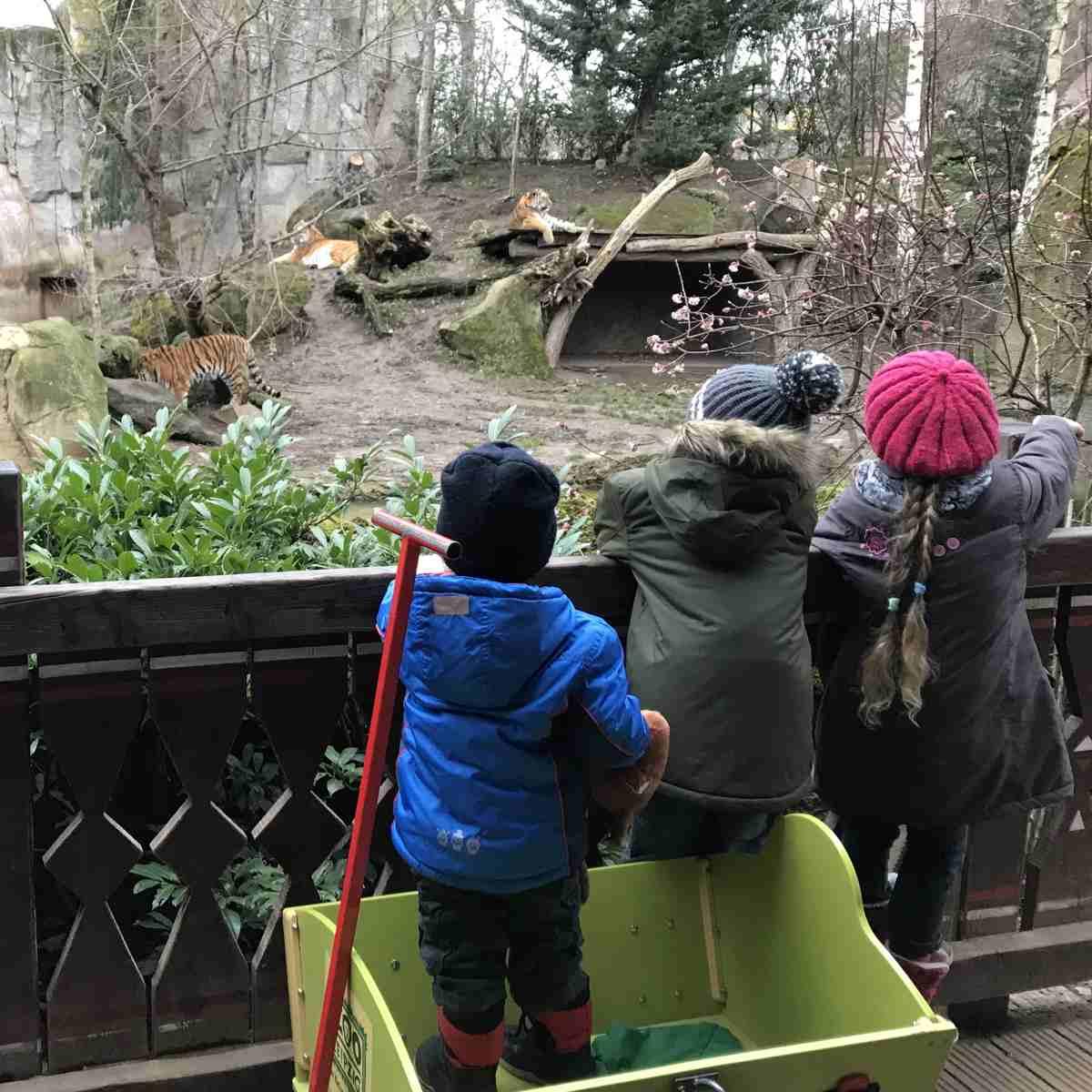 Ein wundervoller Ausflug - Zoo Leipzig - Mama Maus Blog