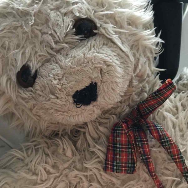 Guten Morgen mit Teddybär