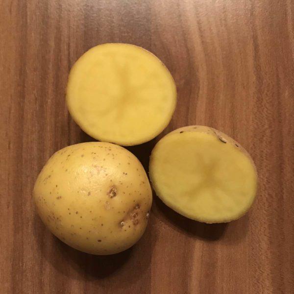 Kartoffeln für Kartoffeldruck