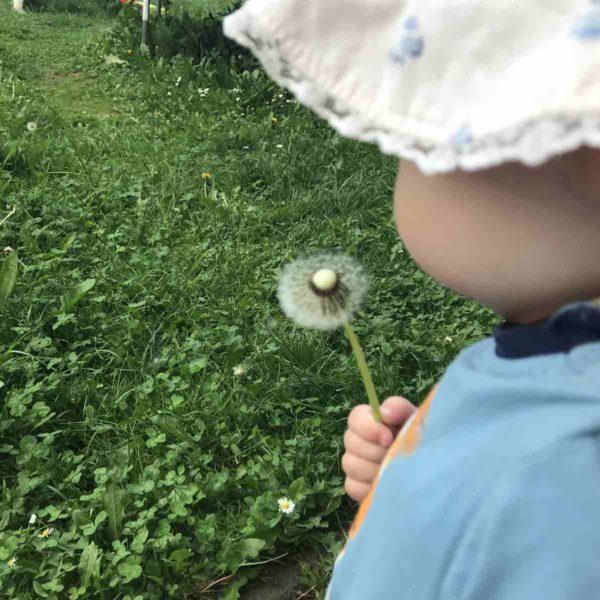 Sprachentwicklung Kind zwei Jahre