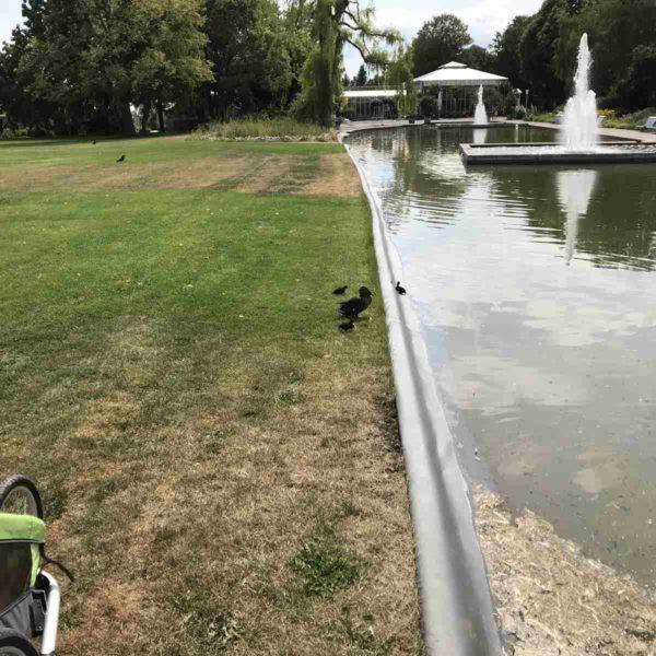 Viele Wasserflächen in der Erfurter Garten Ausstellung