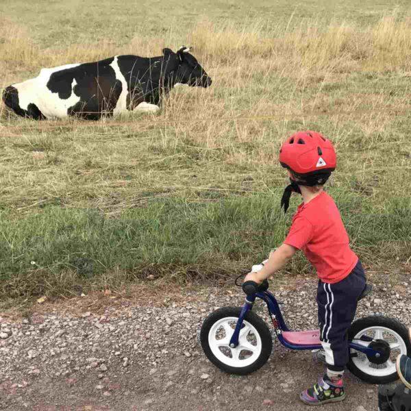 Leichter Fahrradfahren lernen durch Laufradfahren