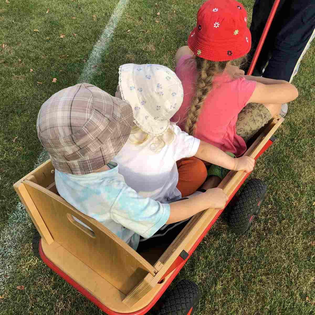 Wochenende in Bildern #WiB 37 2019 – Großeinkauf und Bollerwagen