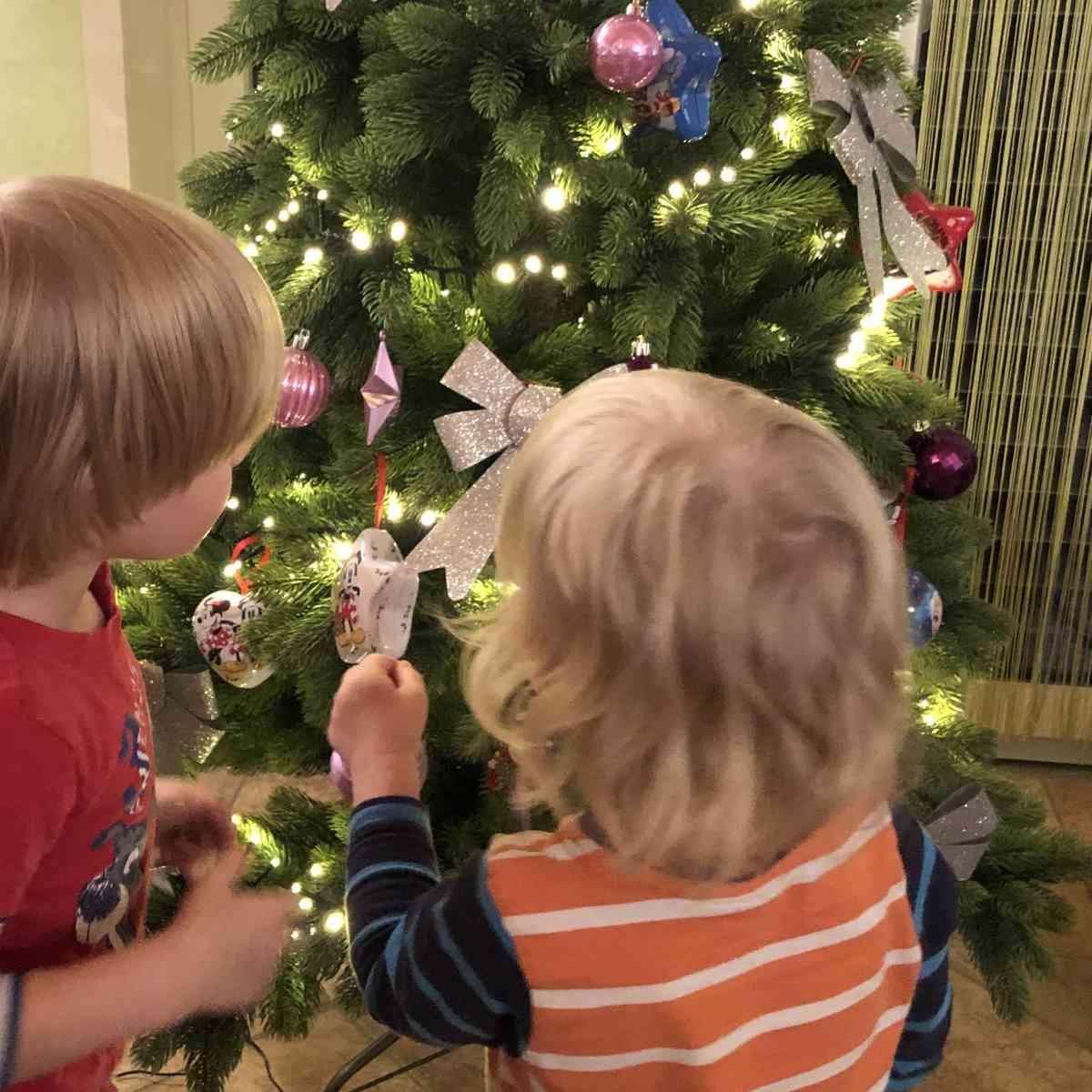 Wochenende in Bildern #WiB 50 2019 – Weihnachtsbaum und Krankenhaus